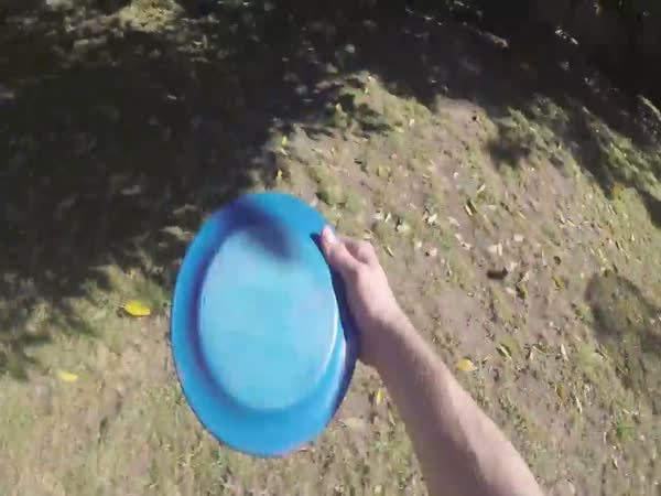 Retrieving A Frisbee Buttered Side Down