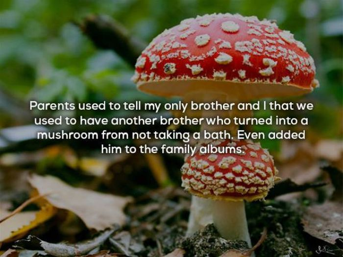 The Truth Is Parents Lie To Their Children All The Time (18 pics)