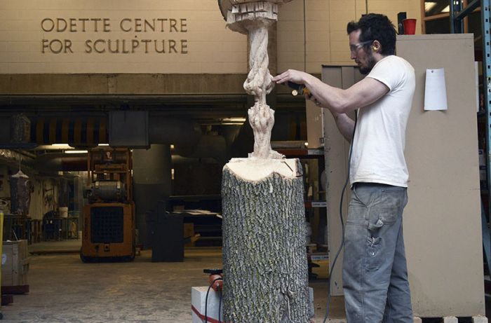 Artist Carves Giant Tree Trunk Down To Frayed Rope (5 pics)