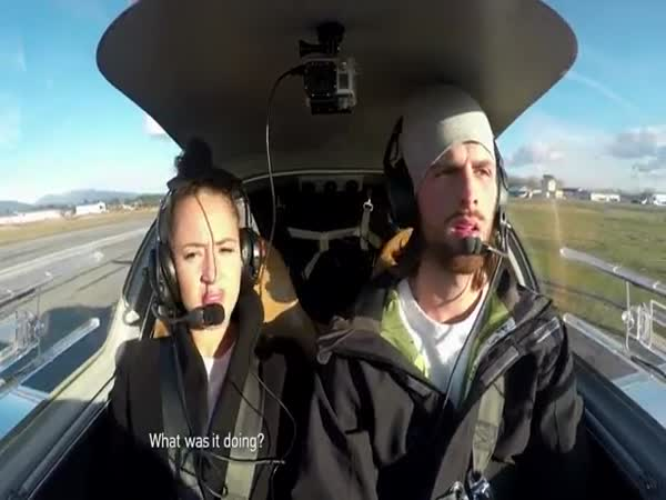 Proposal Flight
