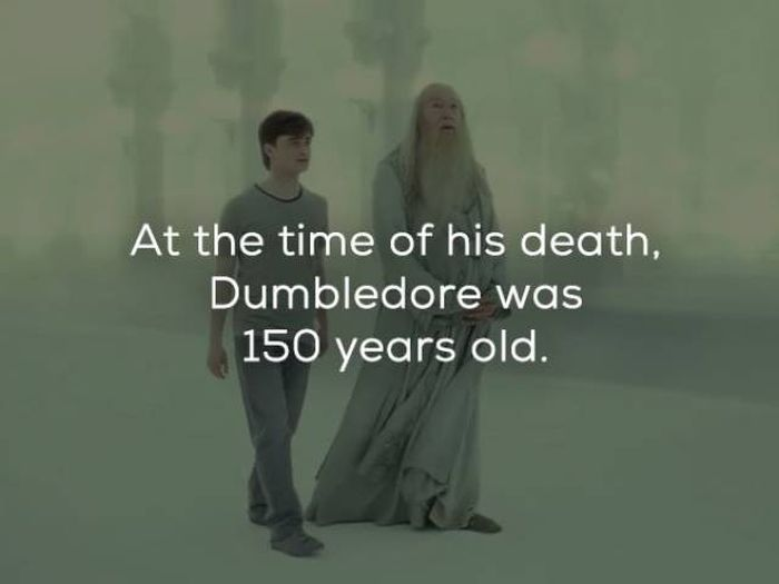 Magical Facts About Harry Potter To Celebrate His 20th Birthday (20 pics)