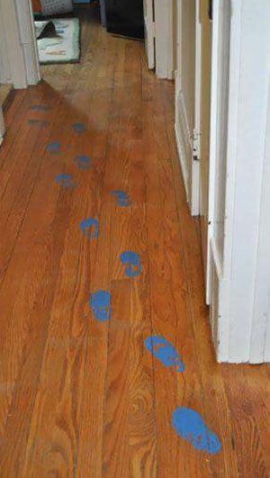 Just Follow The Footprints (2 pics)