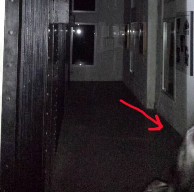 Creepy Unexplained Photos That Will Send Chills Down Your Spine (15 pics)