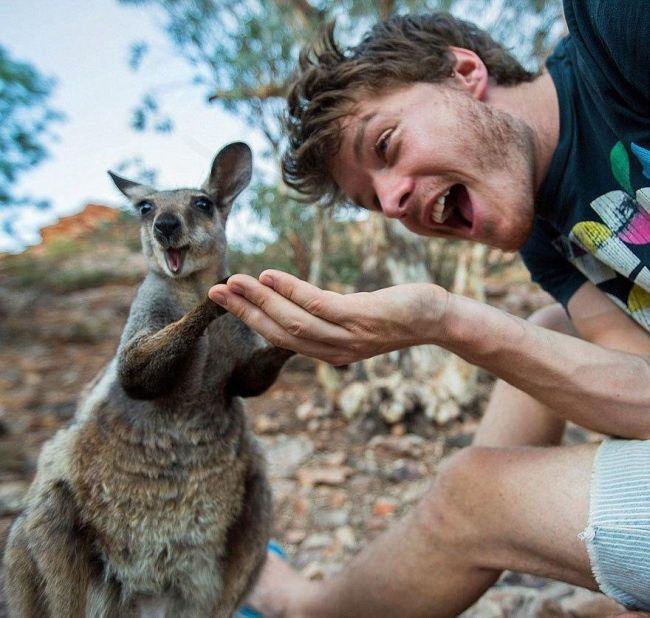 Guy Takes Awesome Selfies With Cool Animals (10 pics)