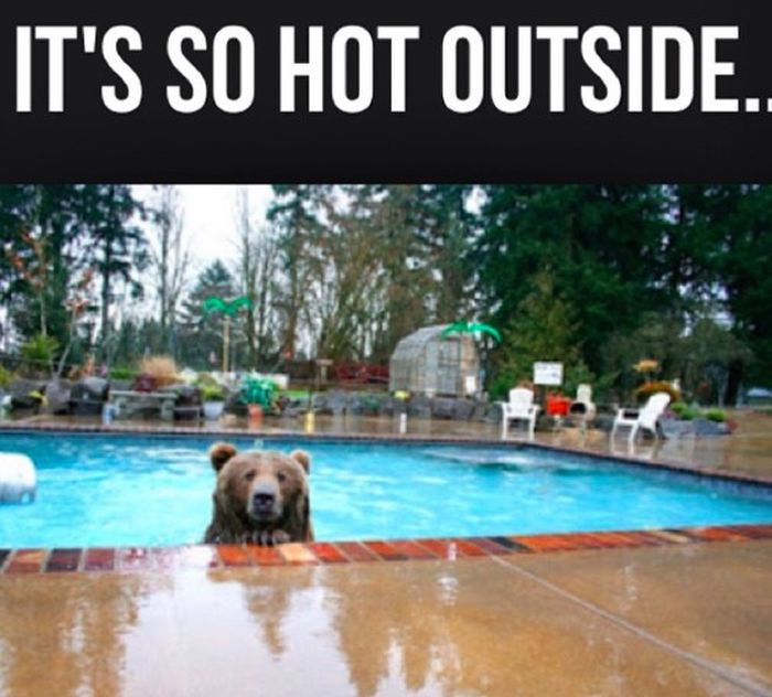 Jokes About Heat That Will Make You Laugh And Cry (22 pics)