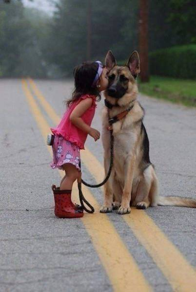 Fine Examples Of Pictures That Say Over A Thousand Words (50 pics)