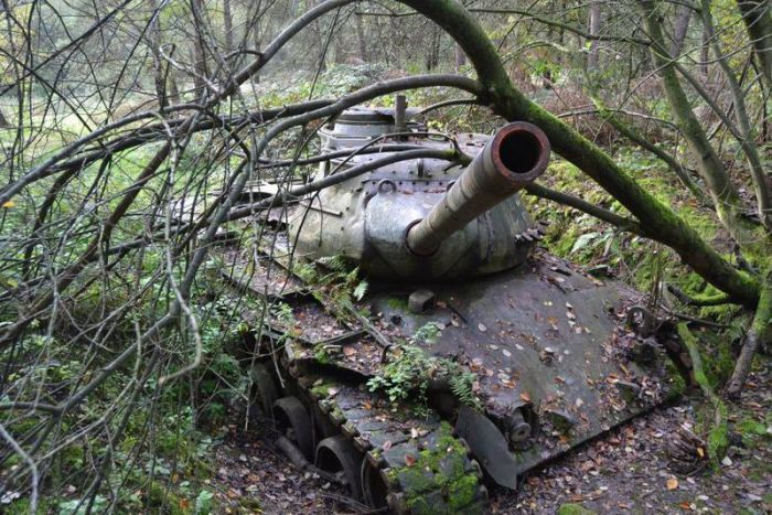 The Earth Is Claiming These Abandoned Tanks In Germany (9 pics)