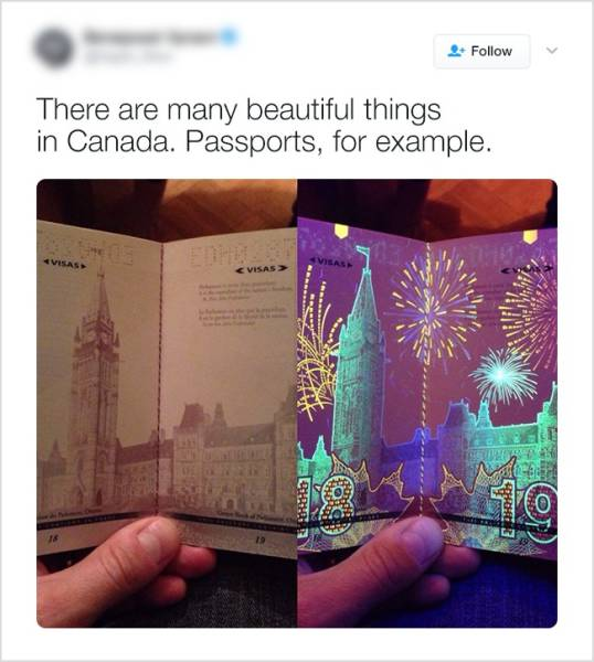 Here's Why Everyone Loves Canada (20 pics)