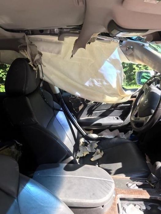 Bear Breaks Into American Car (5 pics)