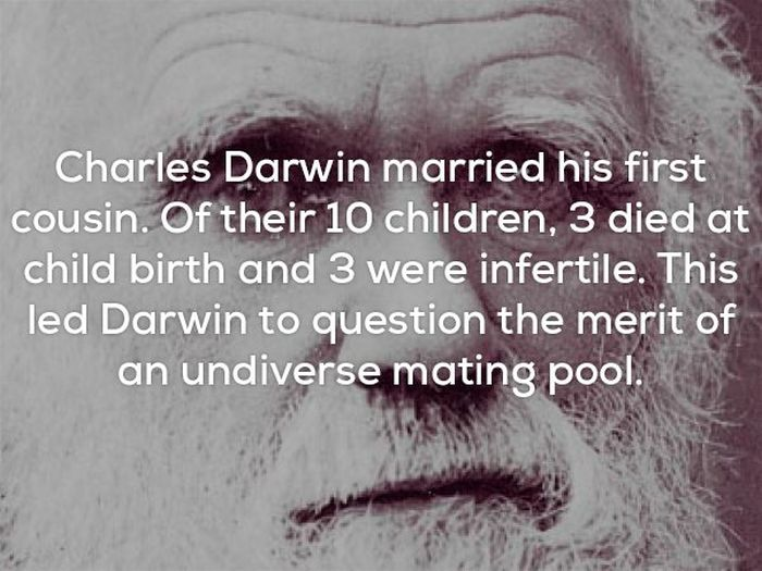 Disturbing Facts That Will Send Chills Through Your Bones (25 pics)
