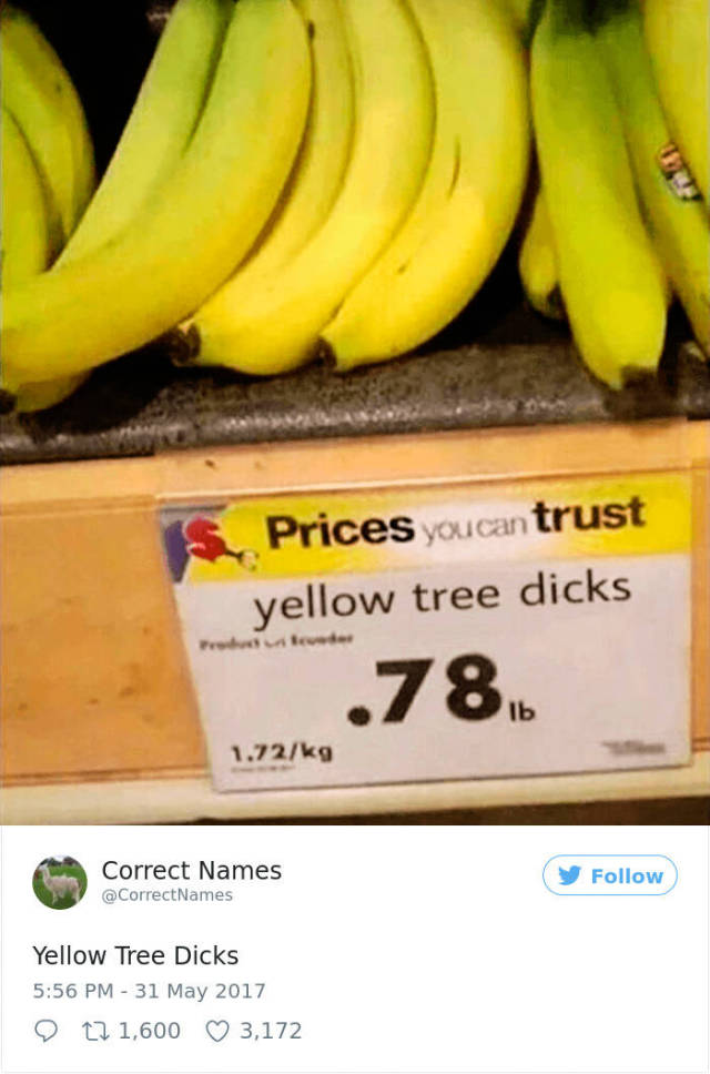 Correct Names For Everyday Things (50 pics)