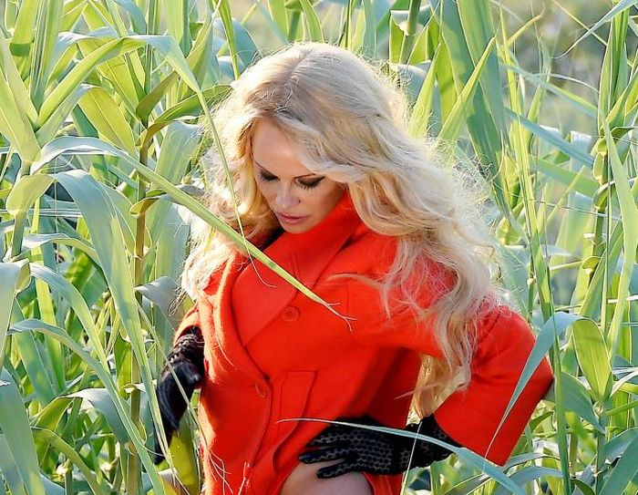 Pamela Anderson Shows Off Some Skin In Hot New Photoshoot (4 pics)
