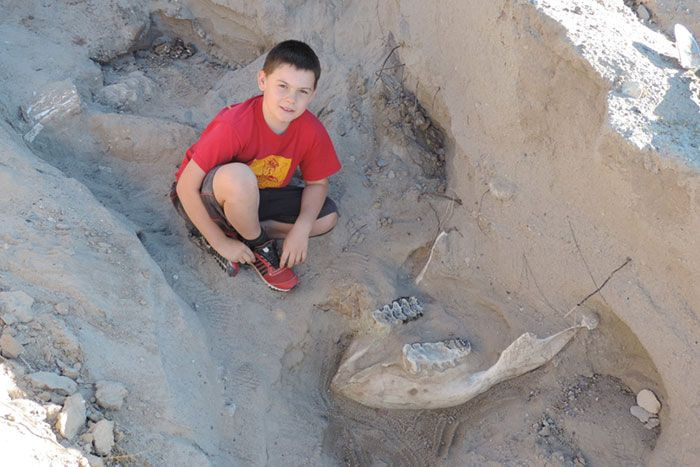 Boy Trips And Discovers Million-Year-Old Fossil (5 pics)