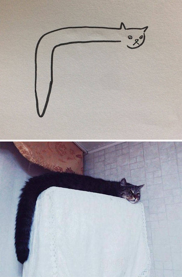 Cat Drawings That Are Actually Pretty Accurate (20 pics)