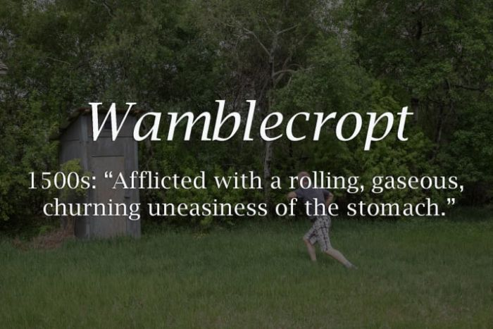 Long Lost Historical Words That You Need In Your Life (19 pics)