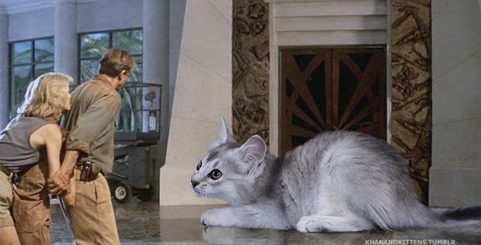 Someone Replaced All Of The Dinosaurs In Jurassic Park With Cats (20 pics)