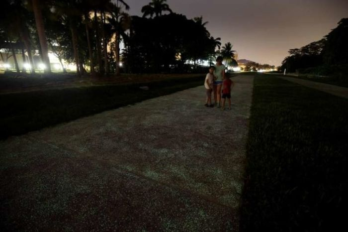 Luminous Path In Singapore Will Light Up Your Life (7 pics)