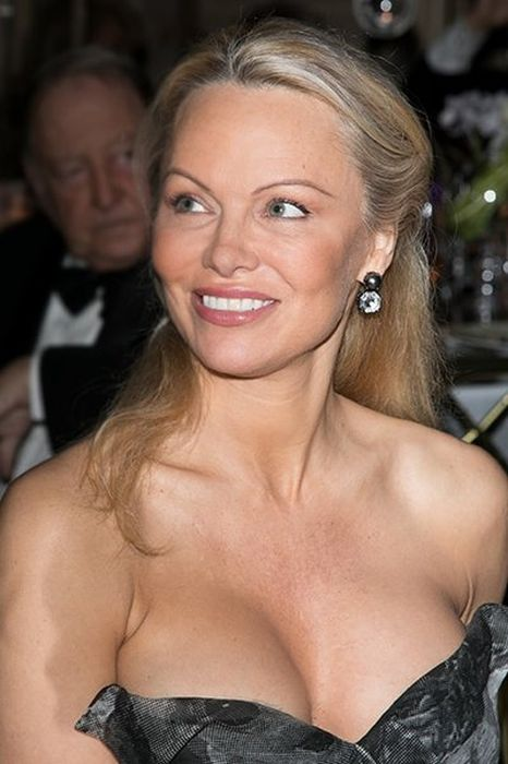 How Pamela Anderson's Appearance Has Changed Over The Years (34 pics)