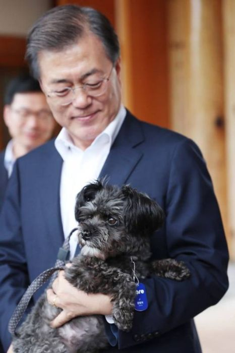President Of South Korea  Adopts Dog Who Was Rescued From A Meat Farm (5 pics)