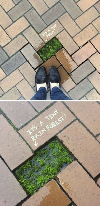 Some Vandals Are Straight Up Geniuses (49 pics)