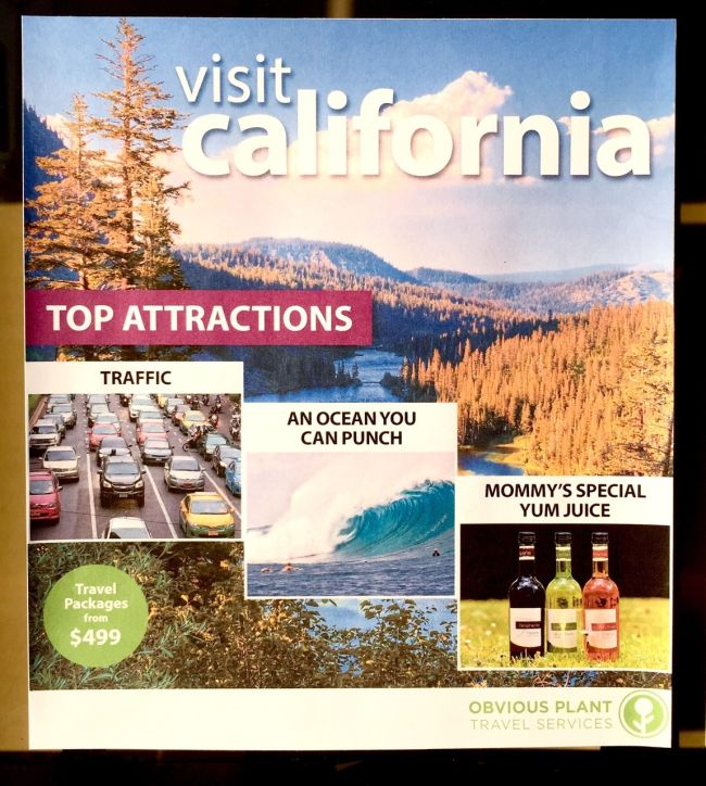 Fake State Tourism Flyers That Are Funny And Accurate (5 pics)