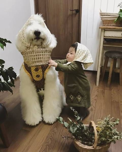 One-Year-Old Girl And Her Giant Poodle Are Friendship Goals Personified (17 pics)