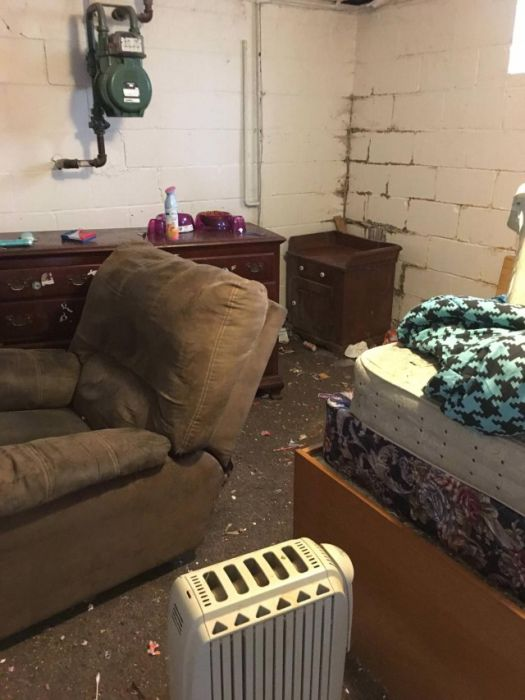 Family With Dogs Destroys Apartment (19 pics)