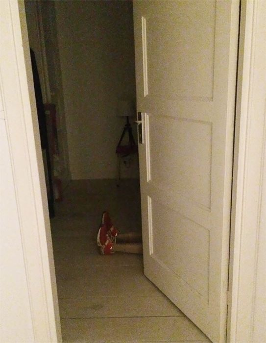 When People Play Pranks In Your Apartment (17 pics)