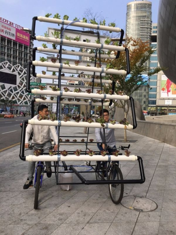 Mobile Garden That Can Be Transported Anywhere (5 pics)