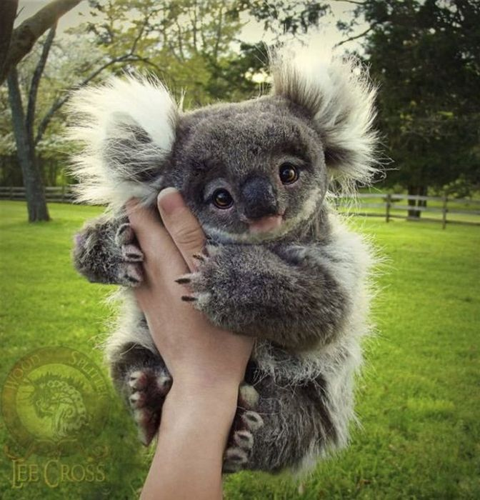 Photos Of Awesome Young Creatures (15 pics)
