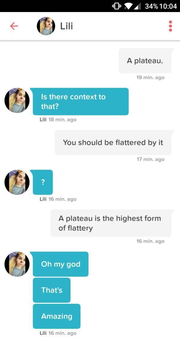 Puns Make Tinder Even Better (29 pics)