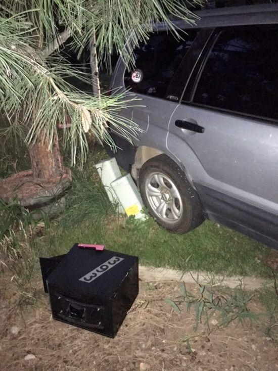 Bear Takes SUV For A Short Drive After Breaking Into It (2 pics)