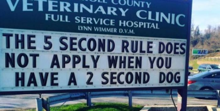Hilarious Vet Clinic Signs That Will Crack You Up (17 pics)