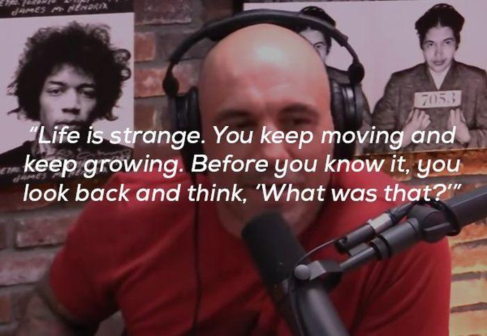 Joe Rogan Definitely Has A Way With Words (15 pics)