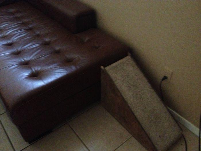 George The Elderly Dachshund Loves Owner's Custom Ramps (4 pics)