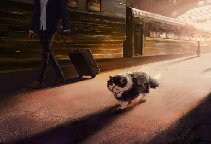 Traveling Cat Takes The Long Road Home (9 pics)