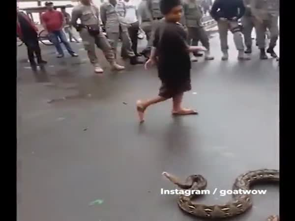 Brave Lad Toys With Huge Snake Before Picking it Up With His Bare Hands