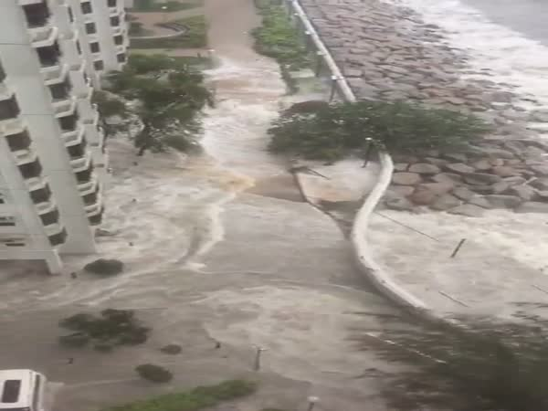 Typhoon Hato Rips Through Hong Kong