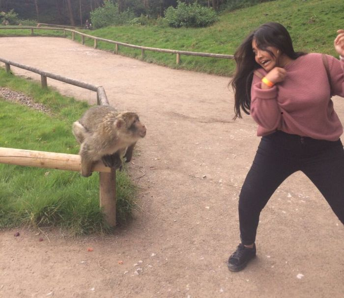 When Taking A Picture With A Monkey Goes Wrong (4 pics)