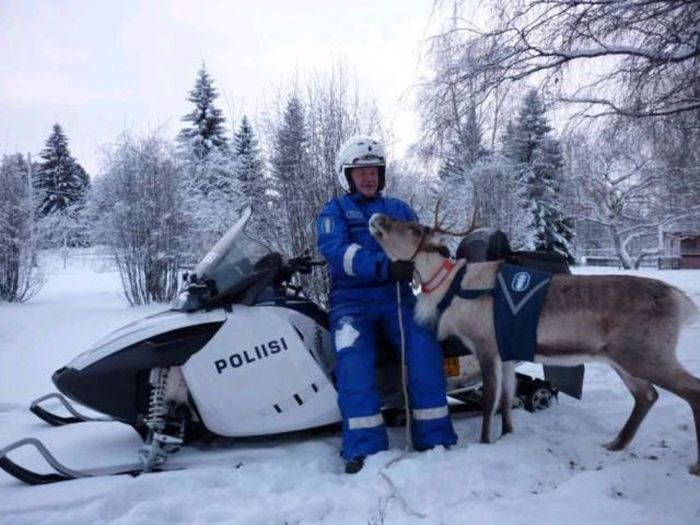 Sometimes Police Like To Have Fun Too (48 pics)