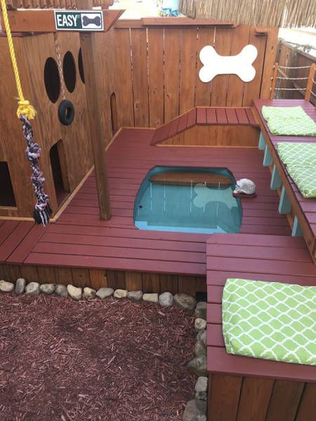 Man Creates A Paradise For His Dogs In His Backyard (8 pics)