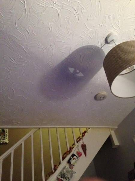 Everything Is Different In The Shadow World (17 pics)