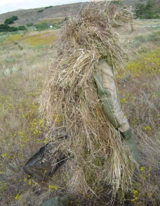Impressive Examples Of Military Camouflage (25 pics)
