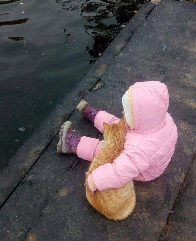 When A Picture Says More Than Just A Thousand Words (51 pics)