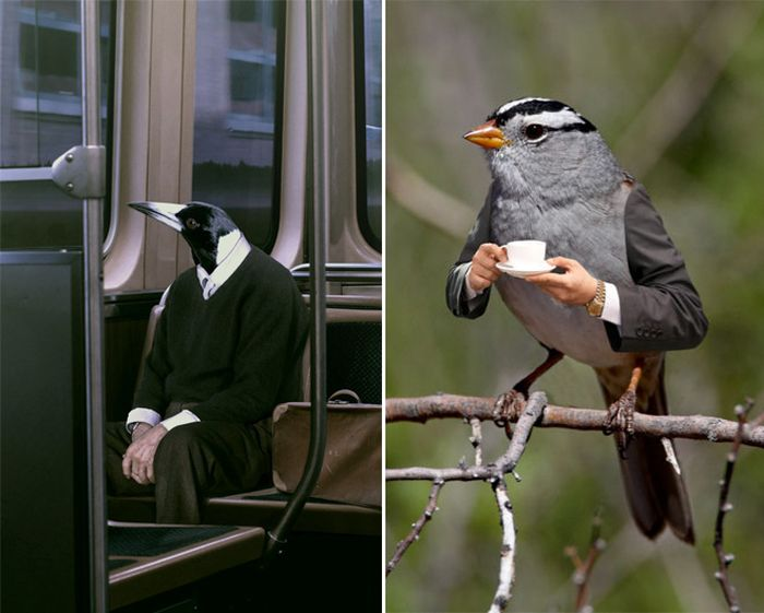 Human-Bird Hybrids (15 pics)