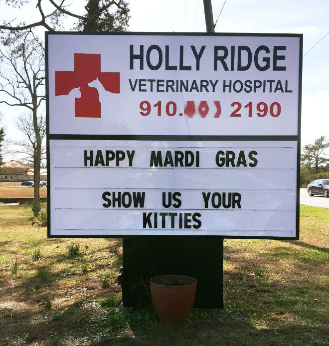 Brilliant Vet Signs (16 pics)