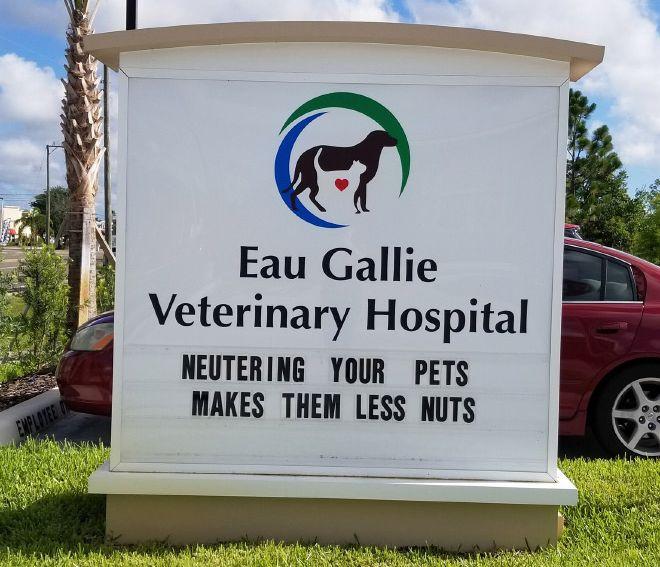 Brilliant Vet Signs (16 pics)