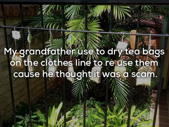 Children Reveal Why Their Parents Think They're Constantly Getting Scammed (19 pics)