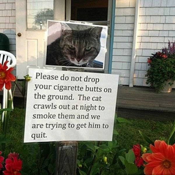 Some Neighbors Should Never Know Your Phone Number (30 pics)