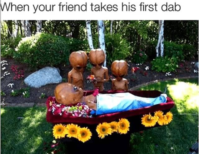 High Memes (40 pics)